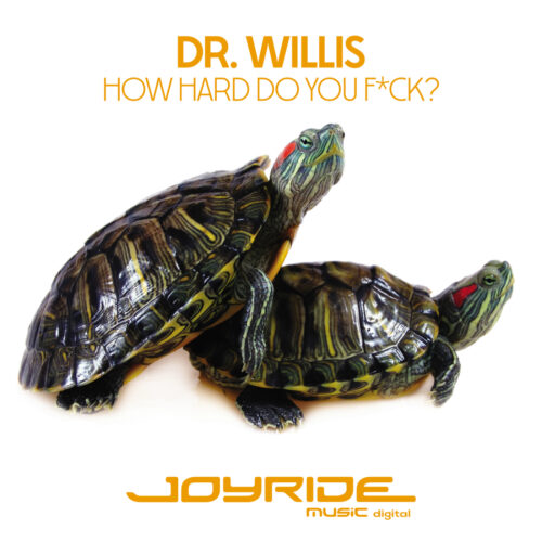 Dr. Willis – How Hard Do You F*ck?