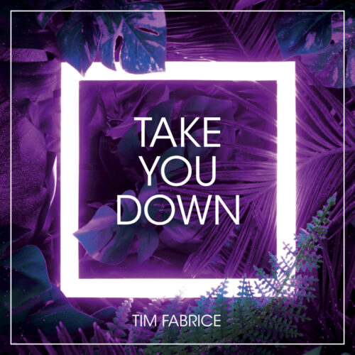 Tim Fabrice – Take You Down
