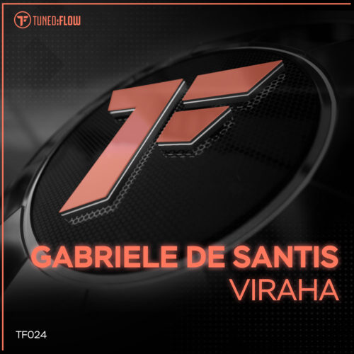 Gabriele De Santis – Viraha