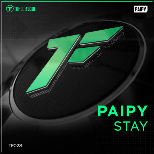 Paipy – Stay