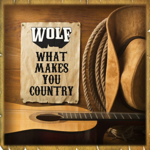 Wolf and Band – What Makes You Country (Live)