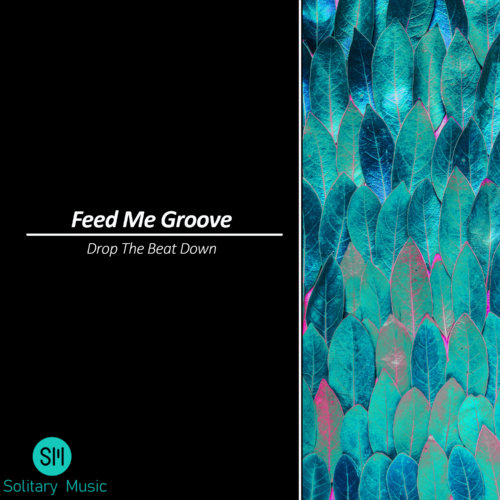 Feed Me Groove – Drop The Beat Down